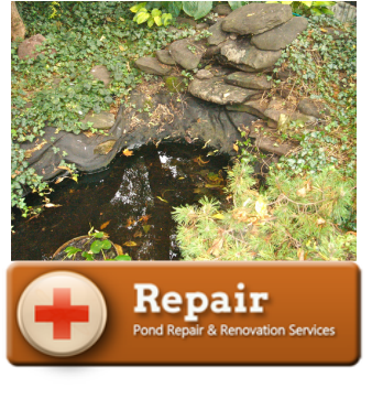 Acorn's Pond & Water Feature Repair Services In Rochester, Buffalo & Western (NY)