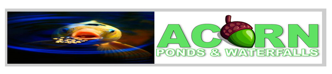 Waterfall Repair & Koi Pond Cleaning/Maintenance Contractors (NY) ACORN!
