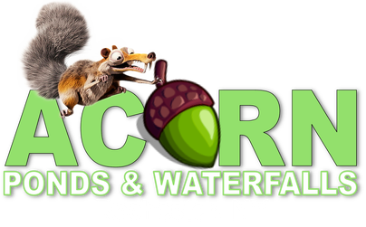 New York Pond & Waterfall (REPAIR) Contractor - Acorn Ponds & Waterfalls Of Rochester